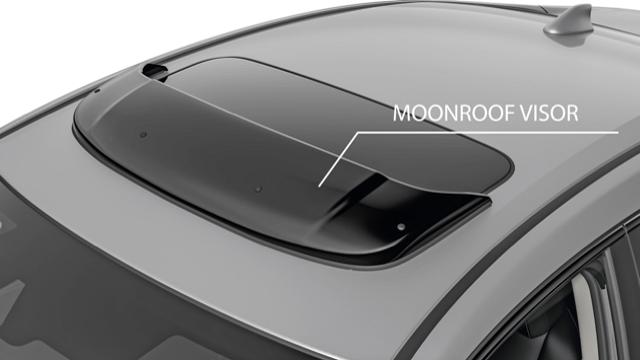 Moon Roof Visor